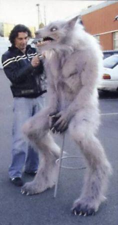 Werewolf, Underworld, William