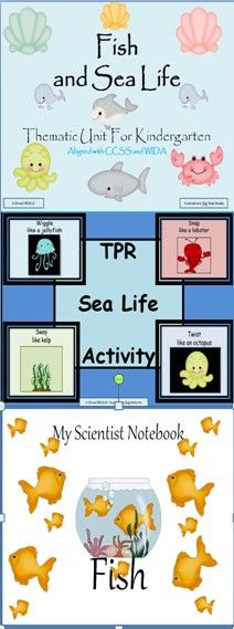 This product an all inclusive thematic unit for your teaching needs. It addresses the science standards for aquatic life in kindergarten The children will learn about characteristics of a fish and the difference between fish and ocean mammals. Extension activities about pond life are included as well. The children will learn the concepts and vocabulary being taught through poetry , art, activities and printables that can be used across the kindergarten curriculum.