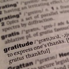 The Gratitude Link Up from Alphabet Salad!  What are you thankful for?