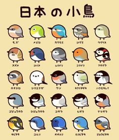 Nihon no Kotori (Small birds of Japan) Cute Animal Drawings, Bird Drawings, Kawaii Drawings, Cute Drawings, Cute Birds, Small Birds, Little Birds, Vogel Silhouette, Animals And Pets