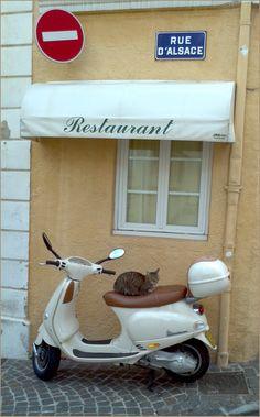 Sainte-Maxime par Cyrril Sneer
