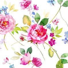 Harrison Ripley - Wild Roses Final
