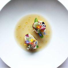 Scallops • Ginger broth • Lactofermented Daïkon • coconut and sesame oil ... * Petoncles • Bouillon aux gimgembre • Radis Daïkon Salmon Recipes, Fish Recipes, Gourmet Recipes, Plate Presentation, Modern Food, Sesame, Rose Tutorial, Tapas, Culinary Arts