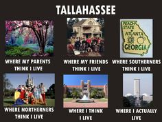 Oh, Tallahassee...what will I ever do with you? Lol