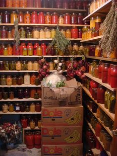 Food pantry stocked with preserves from the gardens and orchard. Food pantry stocked with preserves Mason Jars, Do It Yourself Food, Canned Food Storage, Root Cellar, Home Canning, Canning Recipes, Canning Tips, Preserving Food, Dose