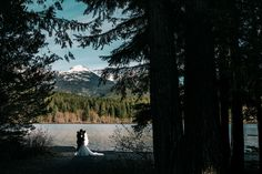 Image result for whistler wedding photographer