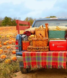 An awesome fall picnic