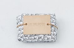Green Tea Handmade Soap. Let Me Grow Collection. Designed by Severina Kids for STU. Illustrated by Alejandra Salvatore