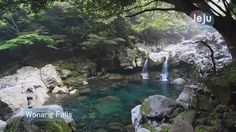 [Jeju Island UCC] Secret Jeju Island - Published on Jun 13, 2011 -  제주도의 세계 7대 자연경관 선정을 기원하며,  지난 4월과 6월에 제주도를 찾아 촬영한 영상으로 만들었습니다.  이미 알고있는 제주의 모습과 더불어 잘 알지 못했던 제주의 아름다운 자연경관을 즐겁게 감상 하셨으면 좋겠습니다.  for selecting jeju of 7wonders, I made video when I visted jeju in april and june. It is jeju's beautiful nature video whether you know or you don't know. I want that you enjoy this video. Thank you for your attention, and vote for jeju