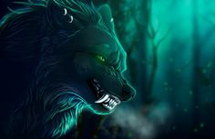 HQ Definition Wallpaper Desktop wolf pic, 299 kB - Colter Cook