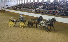 Vognkørsel til show på Den Kongelige Andalusiske Rideskole i Jerez