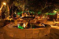Plaza at Boojum Tree's Hidden Gardens in Phoenix by Alan Hajek Photography Hidden Garden, Tree Wedding, Photo Tree, Phoenix, Photo Galleries, Reception, Gardens, Outdoor Decor, Arizona