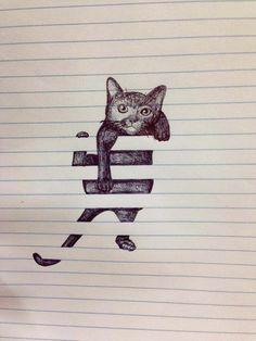 cat blinds