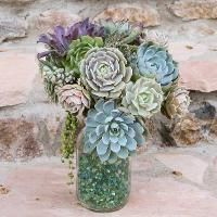 """Bouquet by Debra Lee Baldwin. She wired the undersides of the succulents so they would have """"stems"""" to stand in the vase."""