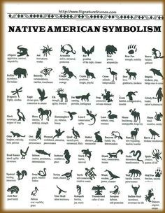 native american animal symbols and meanings   Native American / Native American Animal Symbols and Their Meanings