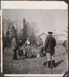 Fotografias da família no exílio: eles estão limpando o terreno para uma horta atrás do Palácio de Alexandre, abril de 1917 - Grã-duquesa Tatiana carregando uma ninhada de sujeira, Imperador Nicolau II em pé com a pá na mão.