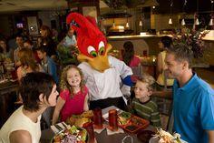 Character Dining at Universal Orlando Resort Universal Orlando, Universal Studios, Orlando Florida Hotels, Hotels Near Disney World, Site Hotel, Grand Bohemian Hotel, Palm Resort, Hard Rock Hotel, Disney Family