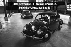 WOAH! VW Beetle? That is a one surprising fact...