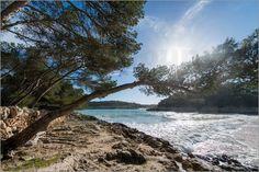 Verkauft als große Leinwand: Der Käufer hat Geschmack.  Ingo Gerlach - Die Bucht von Mondragó auf Mallorca