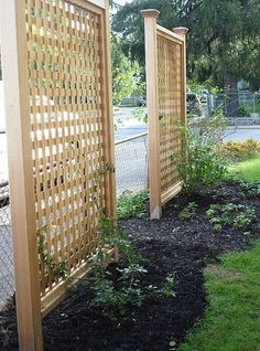 Block the view of the neighbor's house with vertical trellises and climbing vines?