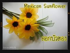 How to make nylon/stocking flower (american sunflower/ดอกบัวตอง) ployandpoom Pom Pom Flowers, Nylon Flowers, Cloth Flowers, Diy Flowers, Fabric Flowers, Paper Sunflowers, Crepe Paper Flowers, Diy Stockings, Nylon Stockings