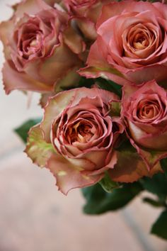 Love the antique rose hue and the crimped and curled edges on these roses.