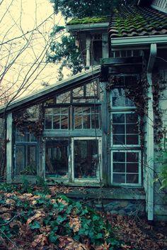 architecture...windows windows windows..lol