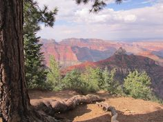 North Rim of the Grand Canyon. Awesome!