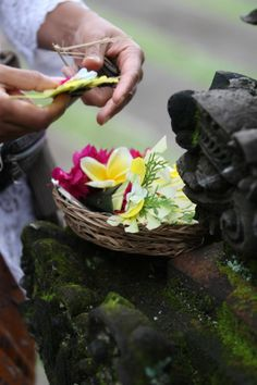 Balinese offering. Bali, Indonesia, Wanderlust, Bucket List, Island, Paradise, Bali, Travel, Exotic Places, temple, places to visit in Bali, Balinese food must try.