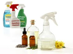 Green cleaners Green and Clean with Essential Oils