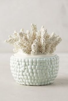 Anthropologie Coral-Topped Candle / mint green sea inspired