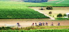 Top 10 SA #RoadTrips (scheduled via http://www.tailwindapp.com?utm_source=pinterest&utm_medium=twpin&utm_content=post350369&utm_campaign=scheduler_attribution)