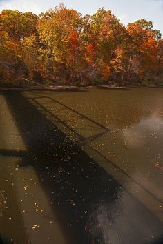 Bridge Shadow In Autumn On The Duck River Tennessee Fine Art Prints As Gift For The Holidays http://fineartamerica.com/featured/bridge-shadow-in-autumn-on-the-duck-river-tennessee-fine-art-prints-as-gift-for-the-holidays-jerry-cowart.html  website: http://jerry-cowart.artistwebsites.com/?tab=artwork