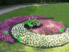 Teppichbeet mit verspielten Formen aus unterschiedlichen Farben Begonien