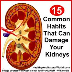 15 Common Habits That Can Damage Your Kidneys,health tips,how to protect your Kidneys Healthy Habits, Healthy Tips, How To Stay Healthy, Polycystic Kidney Disease, Chronic Kidney Disease, Kidney Dialysis, Health And Nutrition, Health And Wellness, Health Fitness