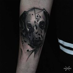 Sketch work style dalmatian head tattoo on the right inner forearm.