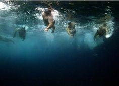 Open ocean swimming