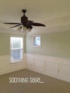 Panel Molding, room is Behr Sage Tint. Also Benjamin Moore Sage Tint is nice.