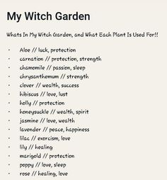 My Witch Garden garden aesthetic Witchy Garden, Green Witchcraft, Witchcraft Herbs, Magick Book, Witch Herbs, Herbal Witch, Herbal Magic, Magic Herbs, Witchcraft For Beginners