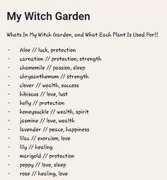 My Witch Garden garden aesthetic Green Witchcraft, Magick Spells, Witchcraft Herbs, Magick Book, Witchy Garden, Witch Herbs, Herbal Witch, Witchcraft For Beginners, Herbal Magic