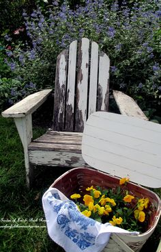 Time to plant the fall pansies! (Garden of Len & Barb Rosen)