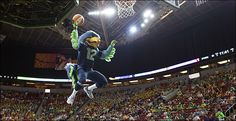 Seattle Seahawks Mascot | Seahawks mascot Blitz goes up during the halftime mascot dunk ...