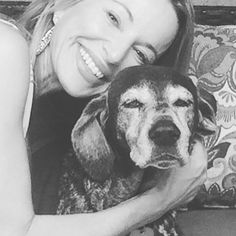 Sarasota pet sitting#dogsofinsta