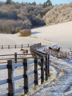Winter on the Ranch My French Country Home, Country Life, Country Living, Cross Country, Country Fences, Country Roads, Winter Scenery, Winter Magic, Snow Scenes