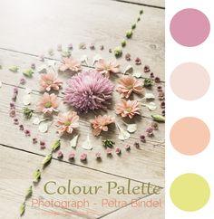 Colour Palette |