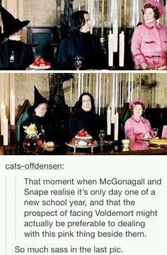 "Hogwarts teachers would much rather face Voldemort than ""that pink thing"" sitting next to them. Harry Potter World, Harry Potter Jokes, Harry Potter Universal, Harry Potter Fandom, Sassy Harry Potter, Funny Harry Potter Pics, Harry Potter Theories, Harry Potter Tumblr Posts, Harry Potter Professors"