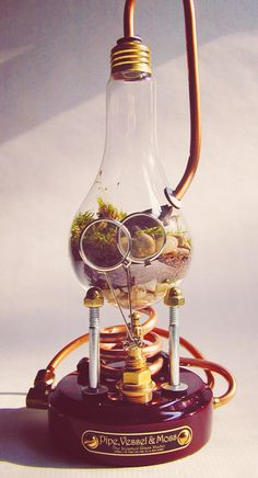 Bitchen terrarium. Steampunk looks best when it looks like the details can actually function
