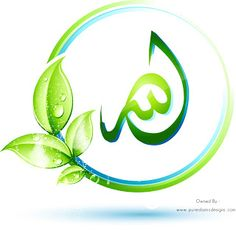 Allah | PureIslamicDesigns.com