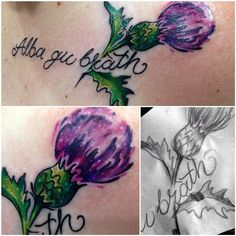 16 Best thistle tattoos images in 2018   Scottish thistle