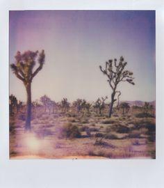 Kristen Blanton Hello America, Painting, Art, Art Background, Painting Art, Kunst, Paintings, Performing Arts, Painted Canvas